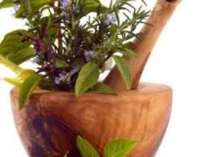 Трави для схуднення - рецепти зборів і правила вживання напоїв з них фото