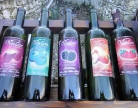 Тутове вино (mulberry wine): інструкція із застосування ягід шовковиці фото