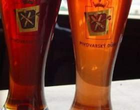Види пива - класифікація улюбленого напою фото