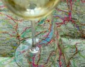 Вина «нового світу» - про виноробство в країнах за межами європи фото