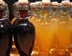 Вино з абрикосів і персиків в домашніх умовах фото