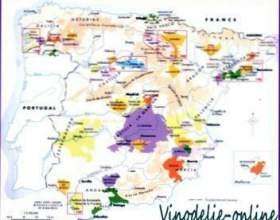 Виноробство в іспанії фото