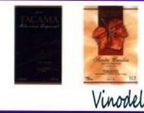 Виноробство в південній америці фото