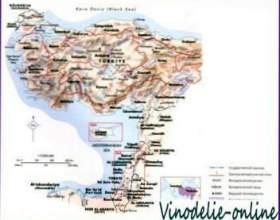Виноробство в середземномор`ї фото