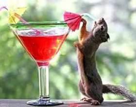 Напої на день народження фото